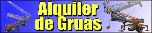 Alquiler de gruas Guadalajara automontantes